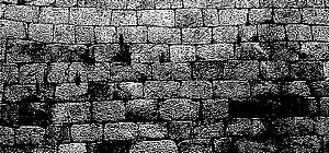 muro03.jpg