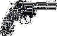 revolver-gamo-r-77-combat43.jpg